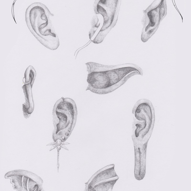How to draw different kinds of ears - Ear with earplugs, elven ears, Buddha's ear, mermaid's ear, demonear, ear of Yoda - Drawing Reference - More drawings and tutorials on www.sketchingowl.com