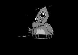 Sketching Owl